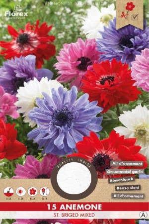 Anemone St. Briged mixed 15...