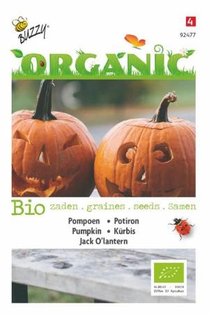 Jack O'lantern BIO Pumpkin...