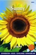 Gigant Sunflowers Helianthus seeds