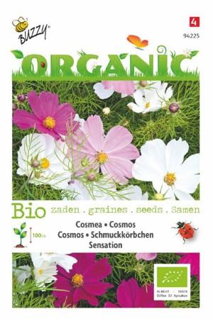 Sensation BIO Cosmos seeds...