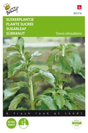 Suikerplantje Stevia zaden