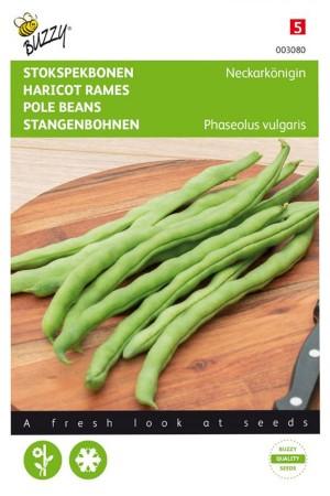 Neckarkönigin Pole beans