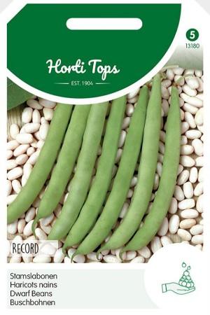 Record Dwarf beans seeds