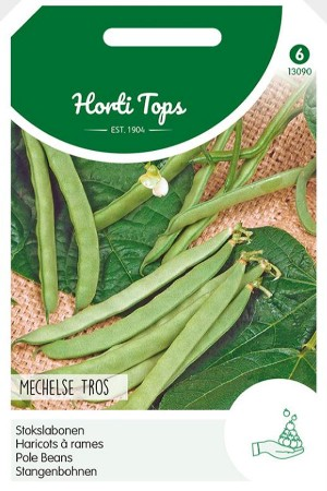 Mechelse Tros Pole beans seeds