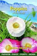 Shirley Klaproos - Papaver rhoeas zaden