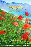 Red Corn Poppy - Papaver rhoeas seeds