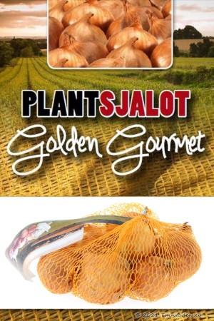 Golden Gourmet gele...