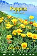 Poppy (Papaver) Californian Poppy