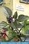 Kaneel Canella Basilicum - Arabische Basilicum zaden