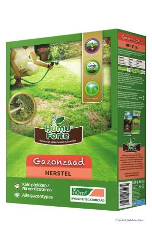 Herstel Gazon Graszaad...
