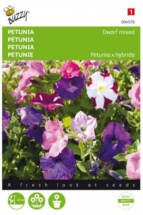 Mixed dwarf Petunia seeds