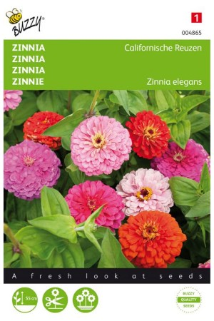 Giants of California Zinnia...