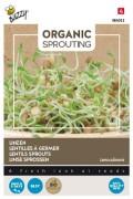 Lentils 250 gr bulk pack - Organic Sprouting