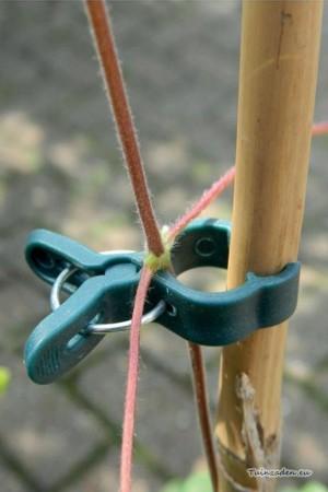 Plantenclips klein -...