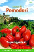 Super Roma VF Tomaat