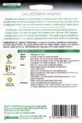 Callistemon Rigidus - Lampenpoetser zaden