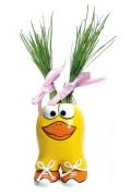 Munakuppi Eend Duck