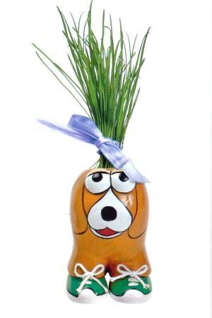 Munakuppi Munakuppi Hond Dog