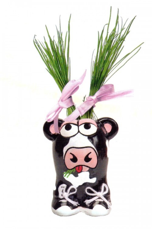 Munakuppi Cow