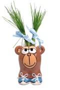 Munakuppi Munakuppi Monkey