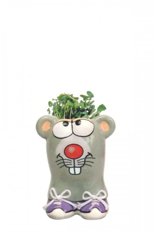 Munakuppi Mouse