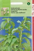 Suikerplant - Stevia zaden