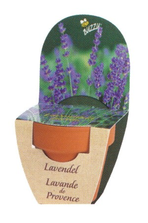 Groeikadootje XL Lavendel