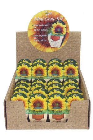 Mini Growing Kit XL Sunflower (Helianthus)