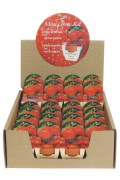 Mini Growing Kit XL Strawberries