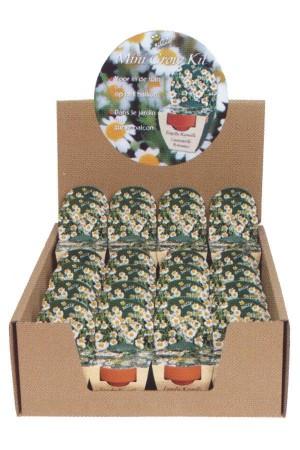 Mini Growing Kit XL Mayweed