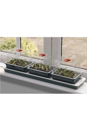Propagator Heated Electric Trio Top Electric Windowsill Propagator 10 Watt - G50