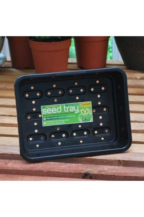 Seedtrays M - Seedtray + Holes - G18B