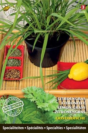 Lemon Grass Lemon Grass