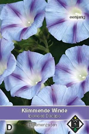 Klimmende winde (Ipomoea) Dacapo