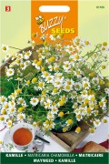 Mayweed Scented Mayweed