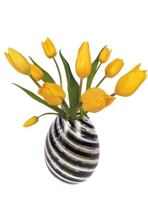 Flat Flowers Tulip Yellow