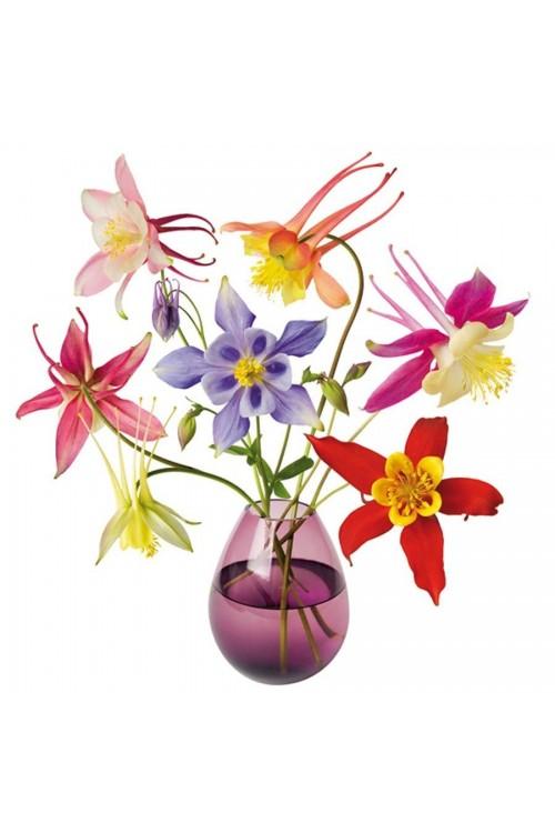 Akelei - Aquilegia - Flat Flower Raamsticker