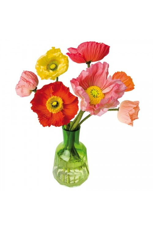 Papaver - Flat Flower Raamsticker
