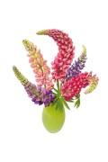 Lupine - Flat Flower Raamsticker