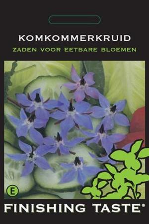 Eetbare Bloemen Komkommerkruid - Eetbare Bloemen