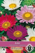 Surpresso Callistephus - Aster seeds