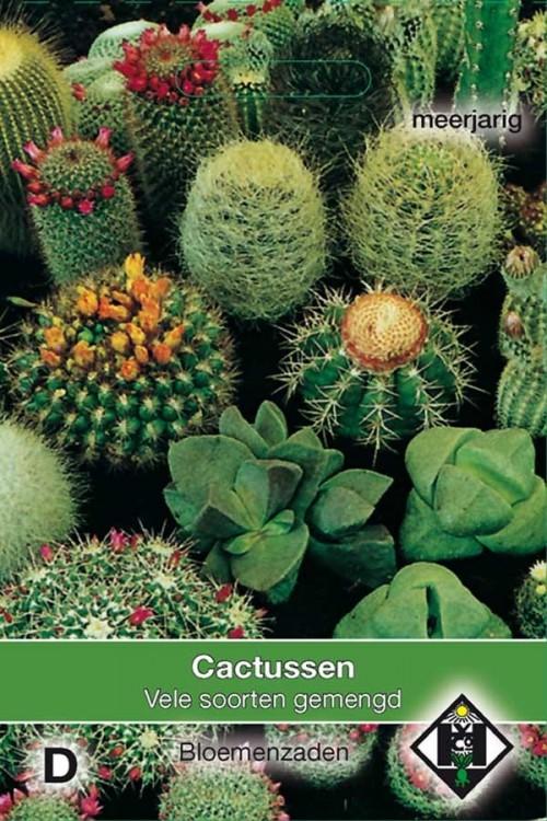 Gemengde Cactus zaden