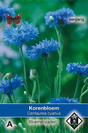 Korenbloem (Centaurea) Enkele blauwe