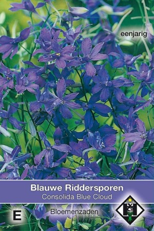Larkspur (Delphinium) Blue Cloud