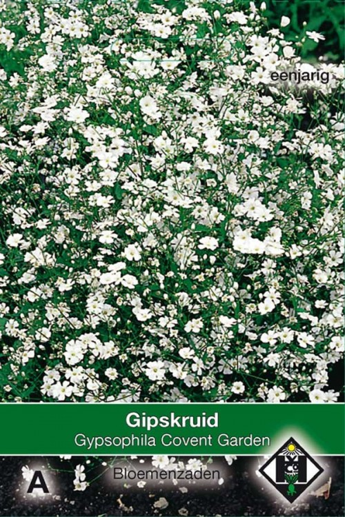 Covent Garden Gypsophila Gipskruid zaden
