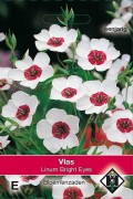 Bright Eyes Linum - Flax seeds