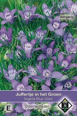 Juffertje-in't-groen (Nigella) Blue Star