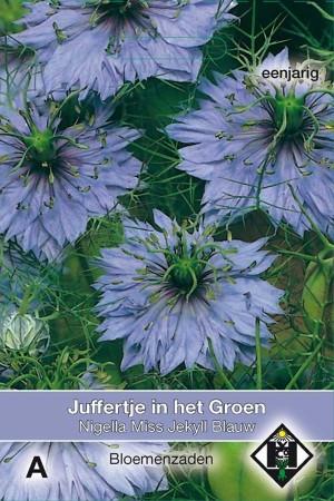 Juffertje-in't-groen (Nigella) Miss Jekyll Blauw
