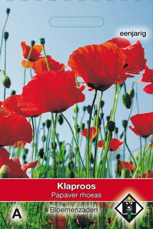 Poppy (Papaver) Papaver rhoeas