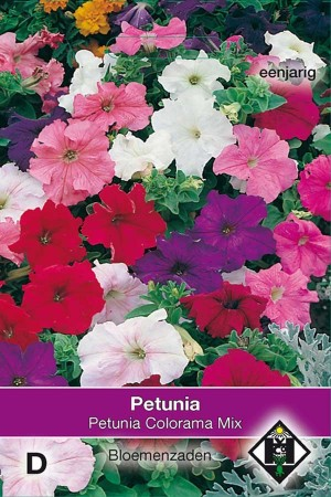 Petunia Colorama Mix